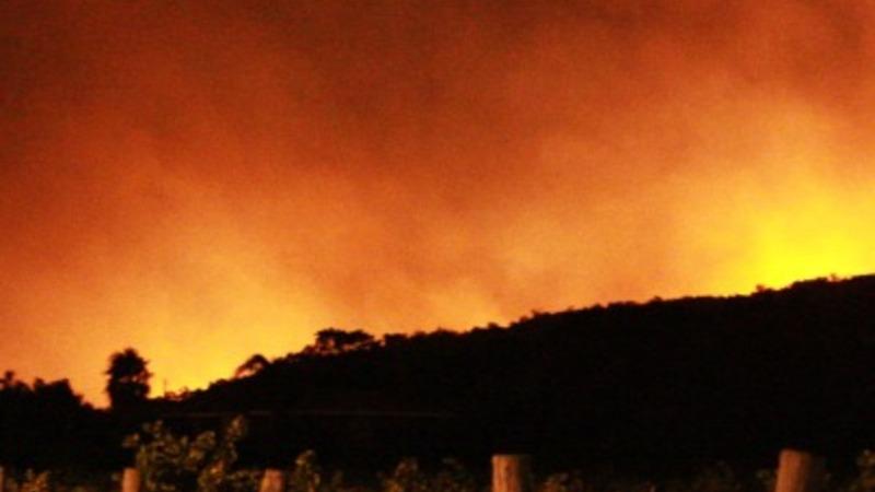 Wildfire smoke threatens Australian wine
