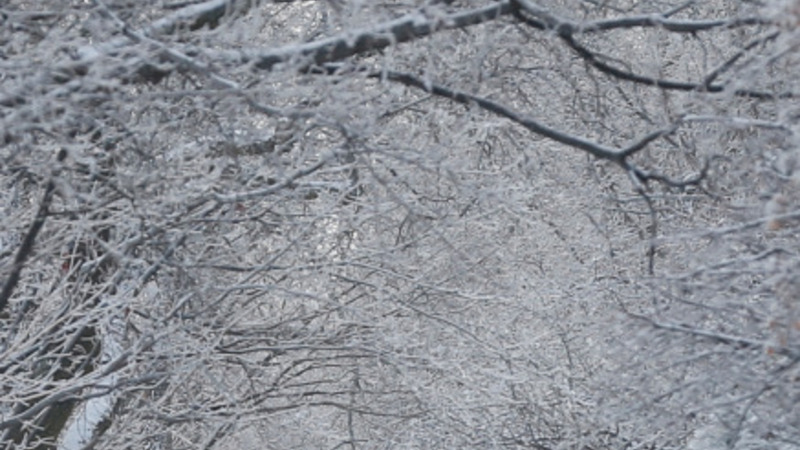 U.S. struggles with biting cold temperatures