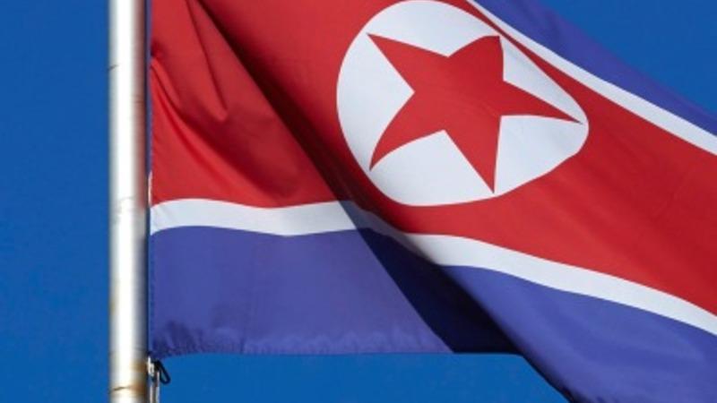 North Korea waves olive branch