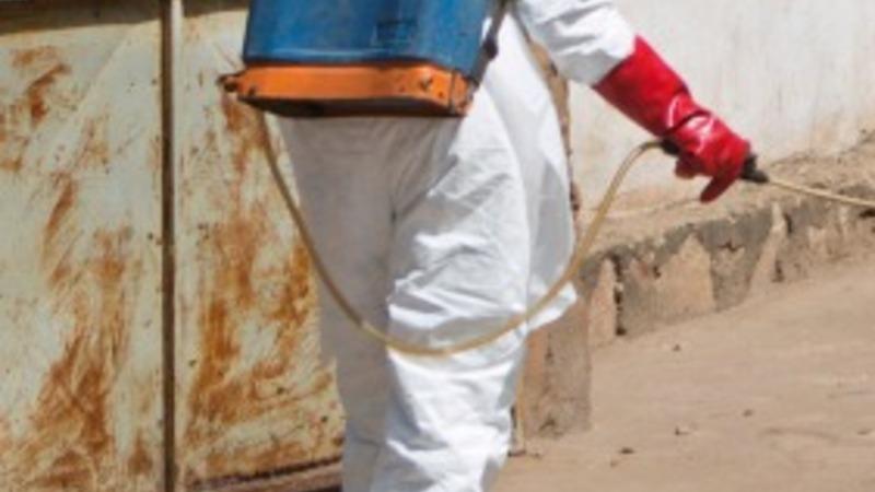 Mali declared Ebola-free