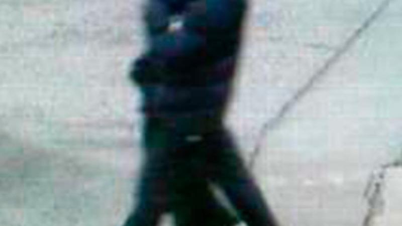 Danish shooting suspect killed