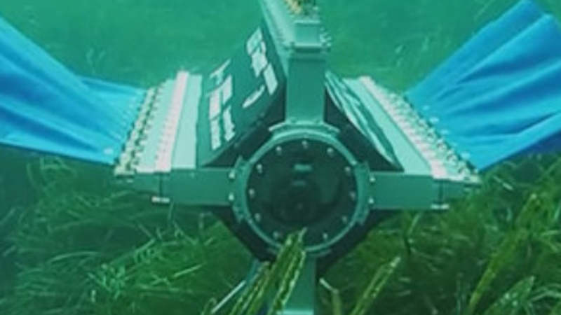 Robot helps students spy on sea floor