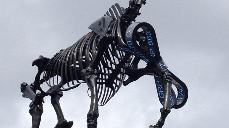 Horse skeleton sculpture hits London