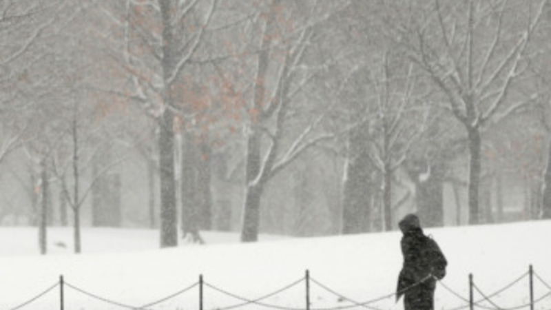 Winners and losers of a brutal winter