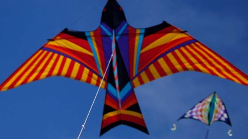 Spirits soar at kite festival