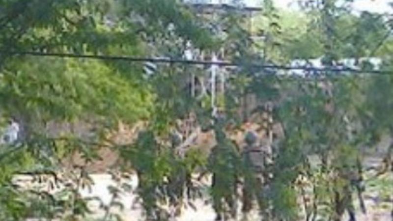 Masked gunmen storm college in Kenya