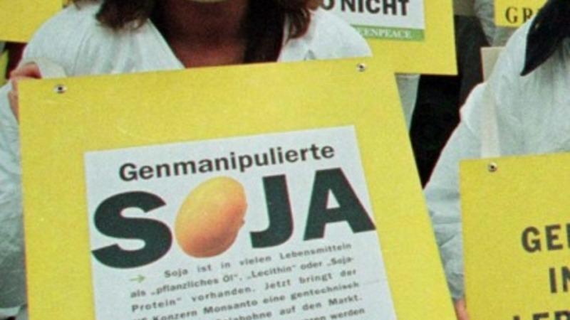 Meat-loving Germans turn vegetarian