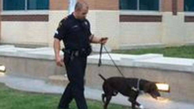 VERBATIM: Suspect intended to kill Dallas officers