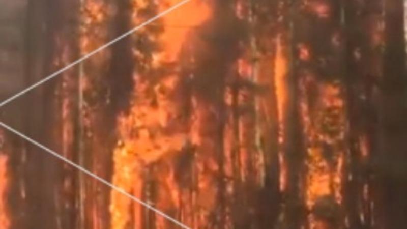 Wildfires wreaking havoc in Alaska