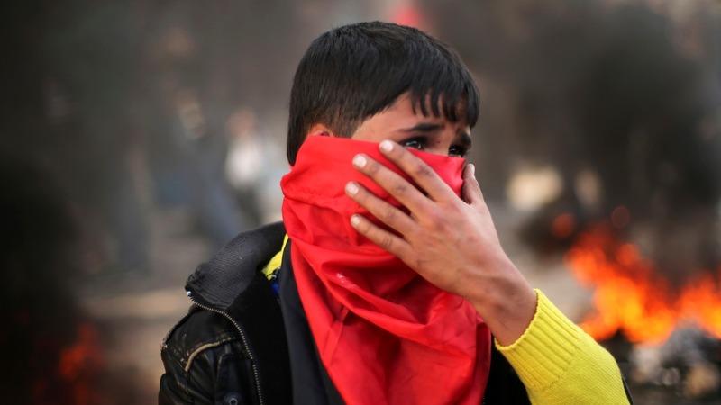 VERBATIM: UN reports on Gaza war crimes