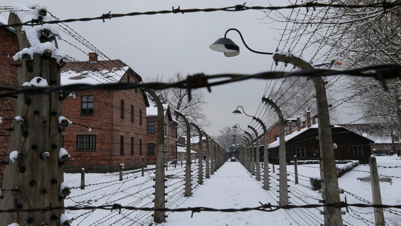 Poland frees UK teens after Auschwitz theft