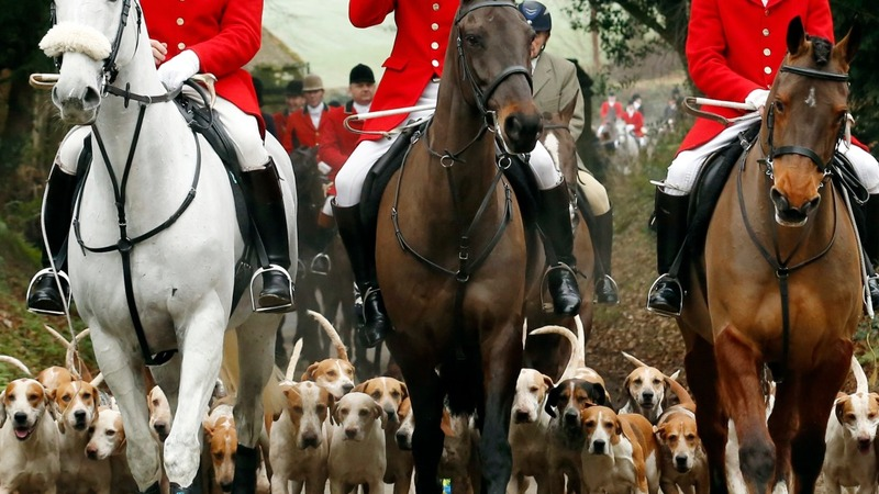 Fox hunting vote delayed after SNP threat