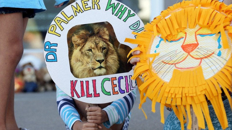 Cecil the Lion trial postponed