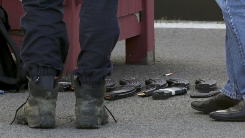 Train gunman denies terrorist tag