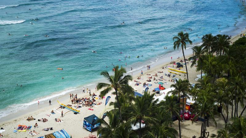 Waikiki beach reopens after sewage spill