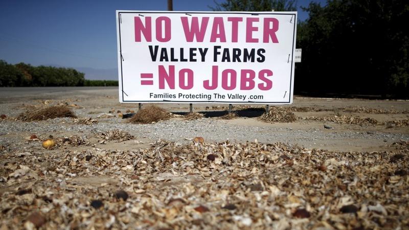 Californians vs. The Drought
