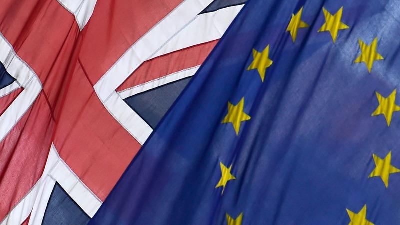 Cameron suffers EU vote defeat