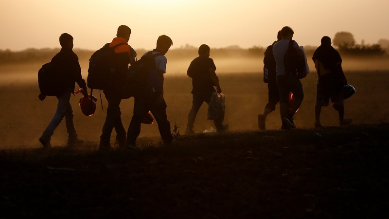 Migrant crisis: Volunteers fill official void