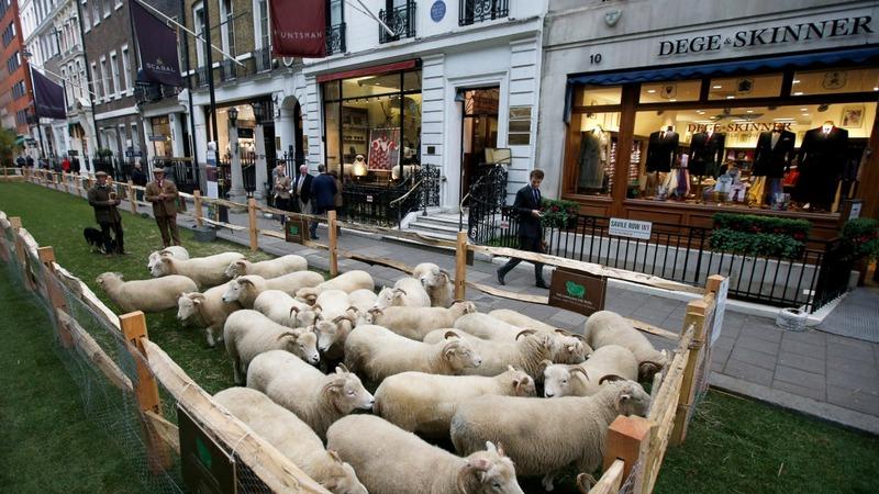 Wool week celebrates sustainable menswear