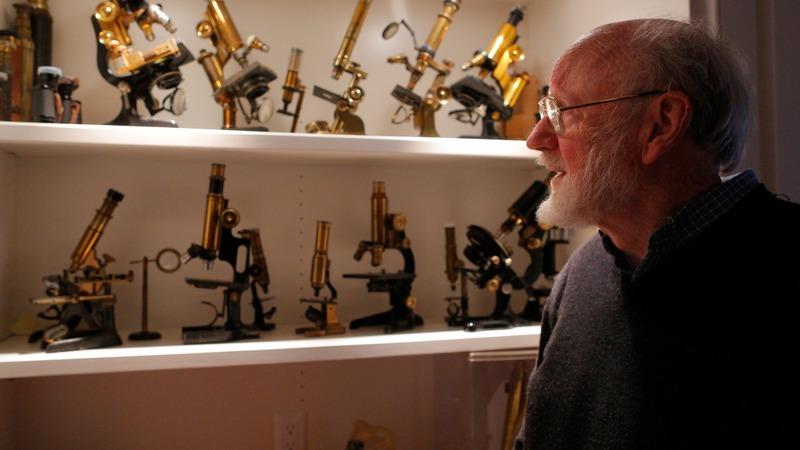 VERBATIM: Nobel Prize against parasitic diseases