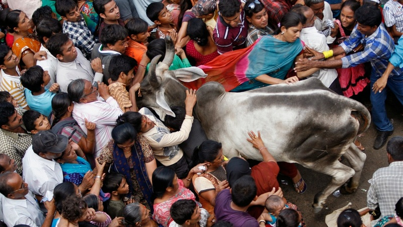 Beef rage sparks debate over India's identity
