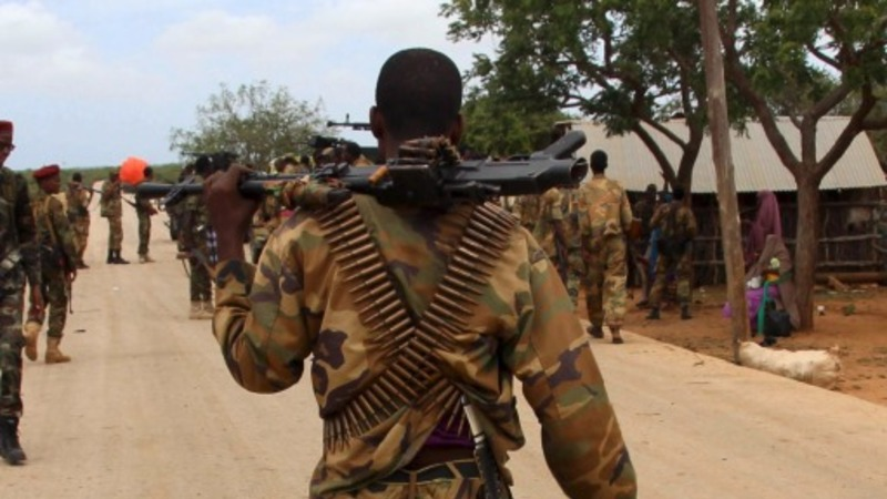 Unpaid soldiers less able to defend Somalia