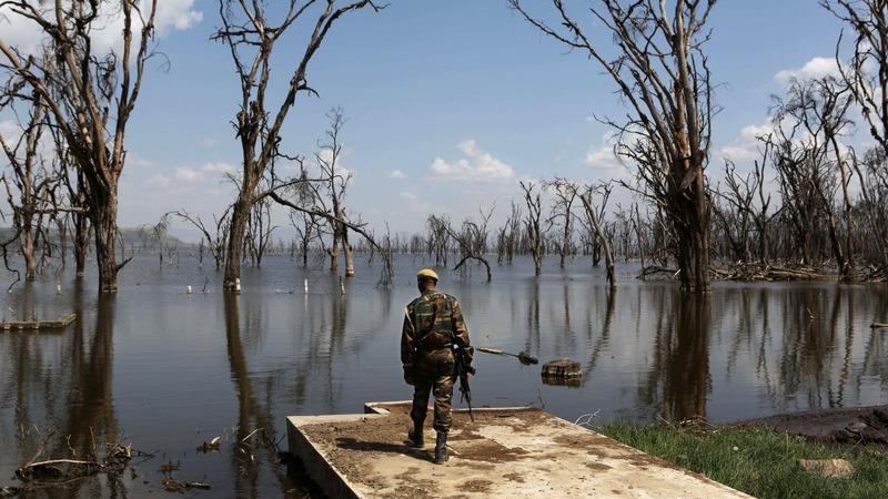 IN PICTURES: The changes of Kenya's Lake Nakuru