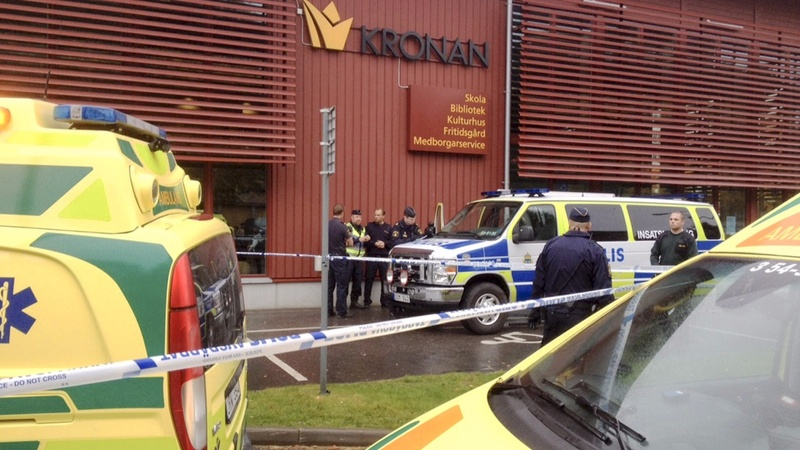 Two dead in Swedish school attack - police