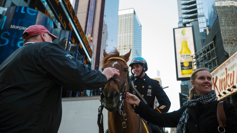 NYPD horses key to city's high alert