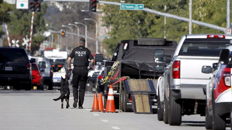 14 dead, 17 hurt in San Bernardino shooting