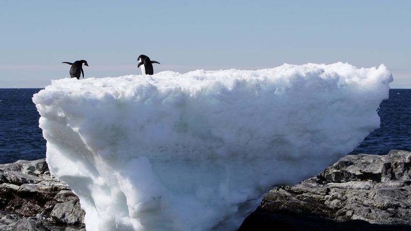 No slowdown in global warming, says UN