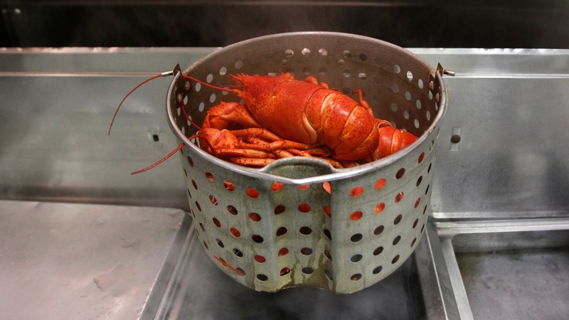 Luxury lobster - at a snip of a price