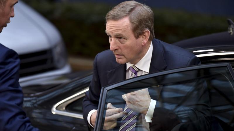 Irish PM calls risky general election