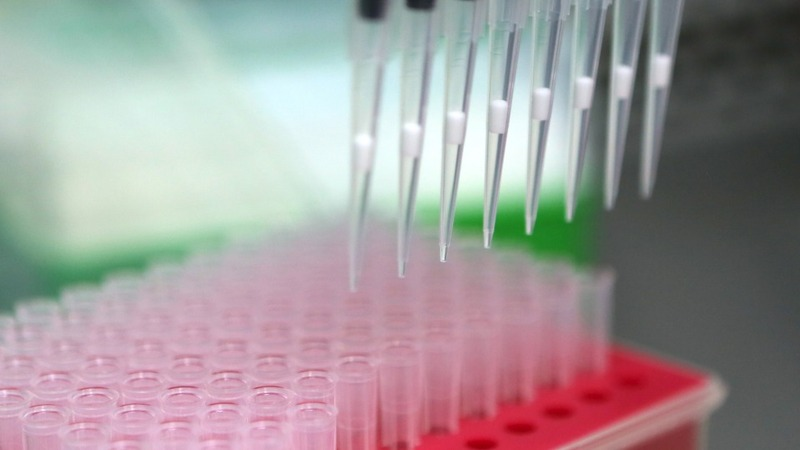 T-cell cancer therapy success