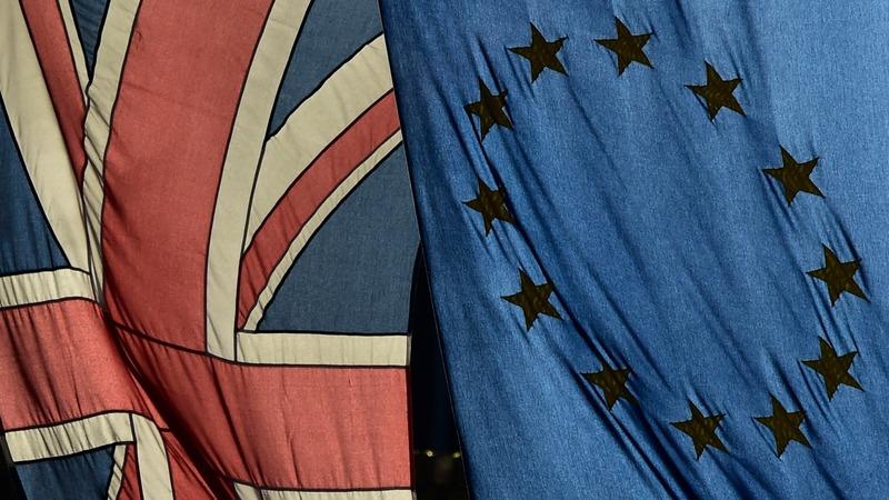 VERBATIM: Cameron tells MPs to vote 'in'