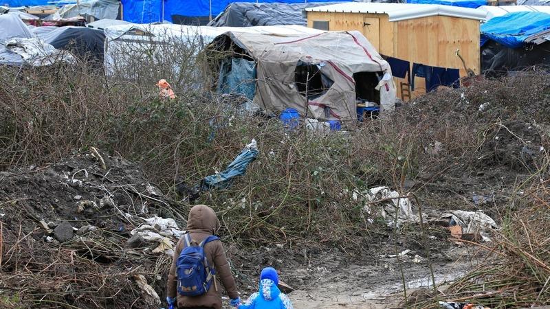 Judge sanctions partial 'Jungle' demolition