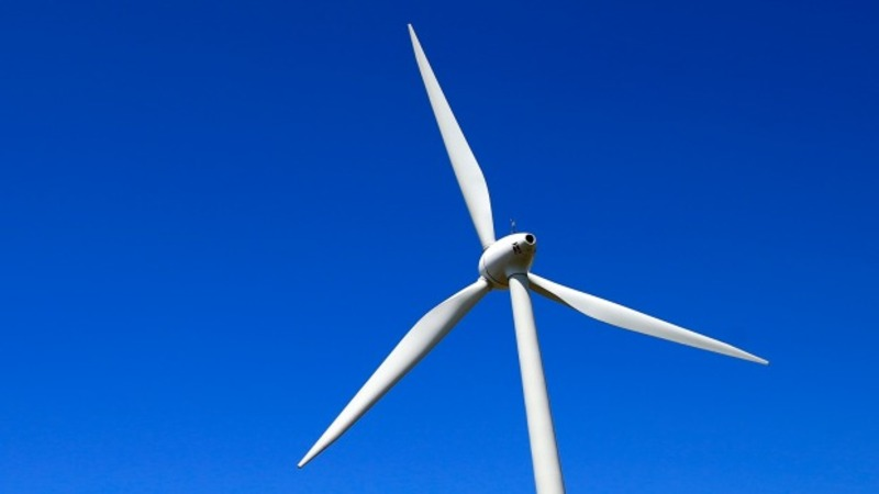 The wind turbine that shuts down for bats
