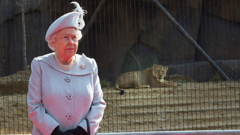Queen opens London Zoo's new lion enclosure