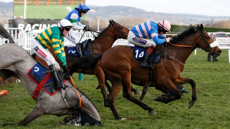 Pendleton divides opinions at Cheltenham