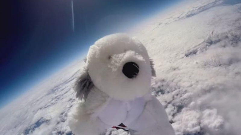 INSIGHT: Children send toy dog into space