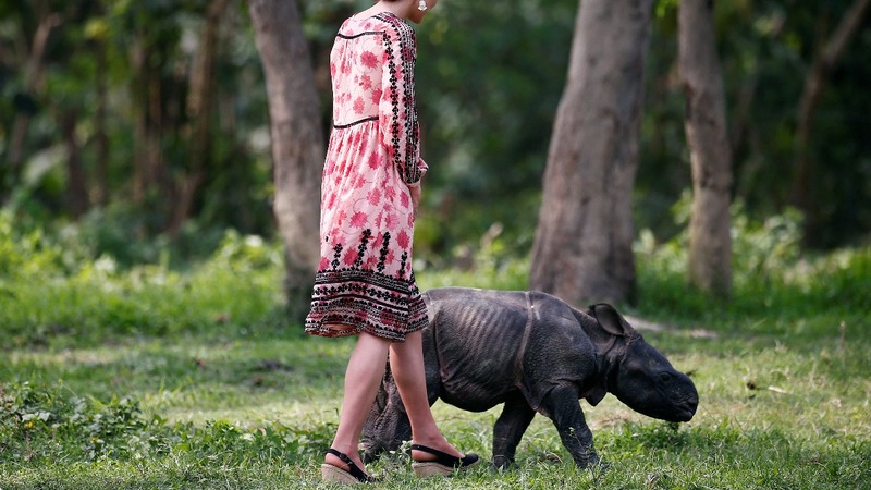INSIGHT: British Royals meet baby Rhinos