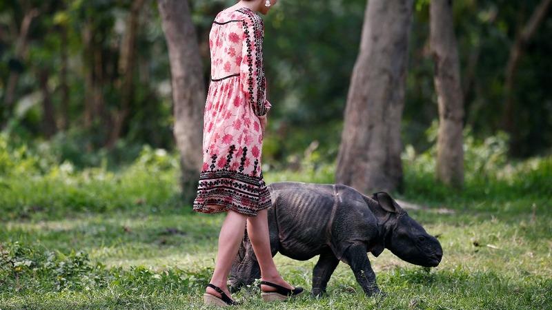 INSIGHT: British Royals meet baby Rhinos