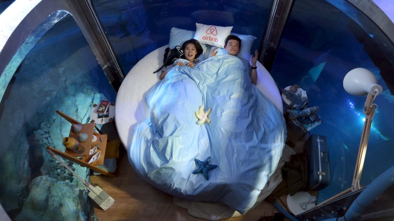 Sleeping with sharks: Airbnb's fishy listing