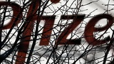 EXCLUSIVE: Pfizer looking to do cancer drug deal