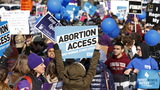 Abortion rates fall in wealthy countries