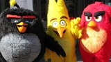 Angry Birds maker bets nest egg on 3D movie