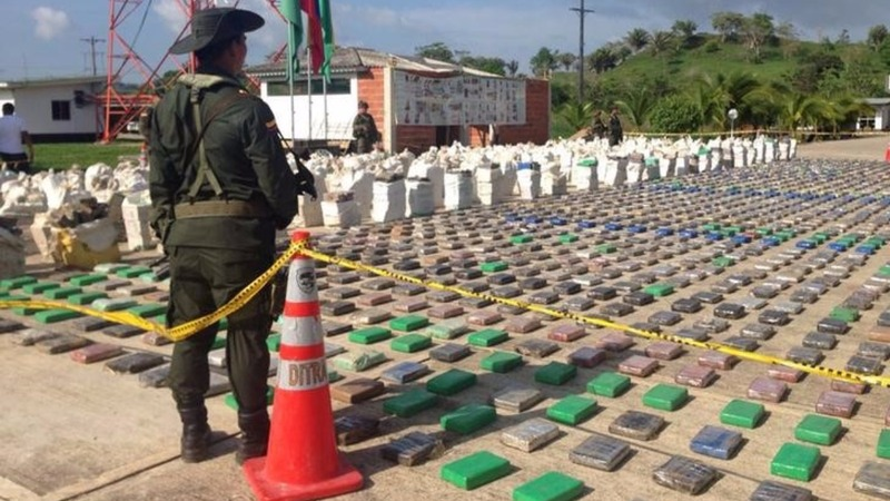 Massive cocaine bust on Colombia banana plantation