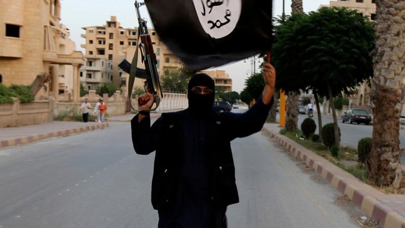 U.S.-backed Syrian rebels begin offensive near Raqqa
