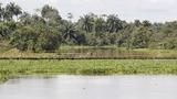 Nigeria's oil-rich Delta under militant resurgence
