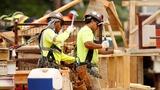 U.S. hiring plummets to a five-year slump